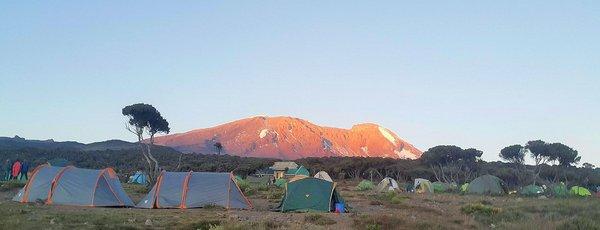 kilimandjaro-voie-machame-2.jpg