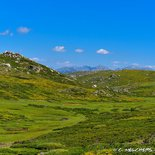 Hiking on the Coscione plateau in Southern Corsica