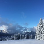 Snowshoeing and yoga morning in the Aravis Massif (Haute-Savoie)