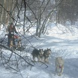 Mushing for teens from December to end of March in Belledonne Massif (Isère)