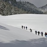 Snowshoeing weekend in Bauges Massif (Savoy)
