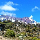 Ascent of Kilimanjaro by the Machame route