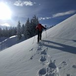 Snowshoeing morning in the Saisies forest (Savoie)