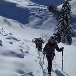 Snowshoeing afternoon in Les Saisies (Savoie)