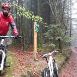 Mountain bike enduro of Haut Folin (Morvan, Burgundy)