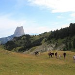 Multi-activity holidays in Vercors for families