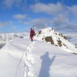 Exploration ski-mountaineering and animal observation in Spitsbergen
